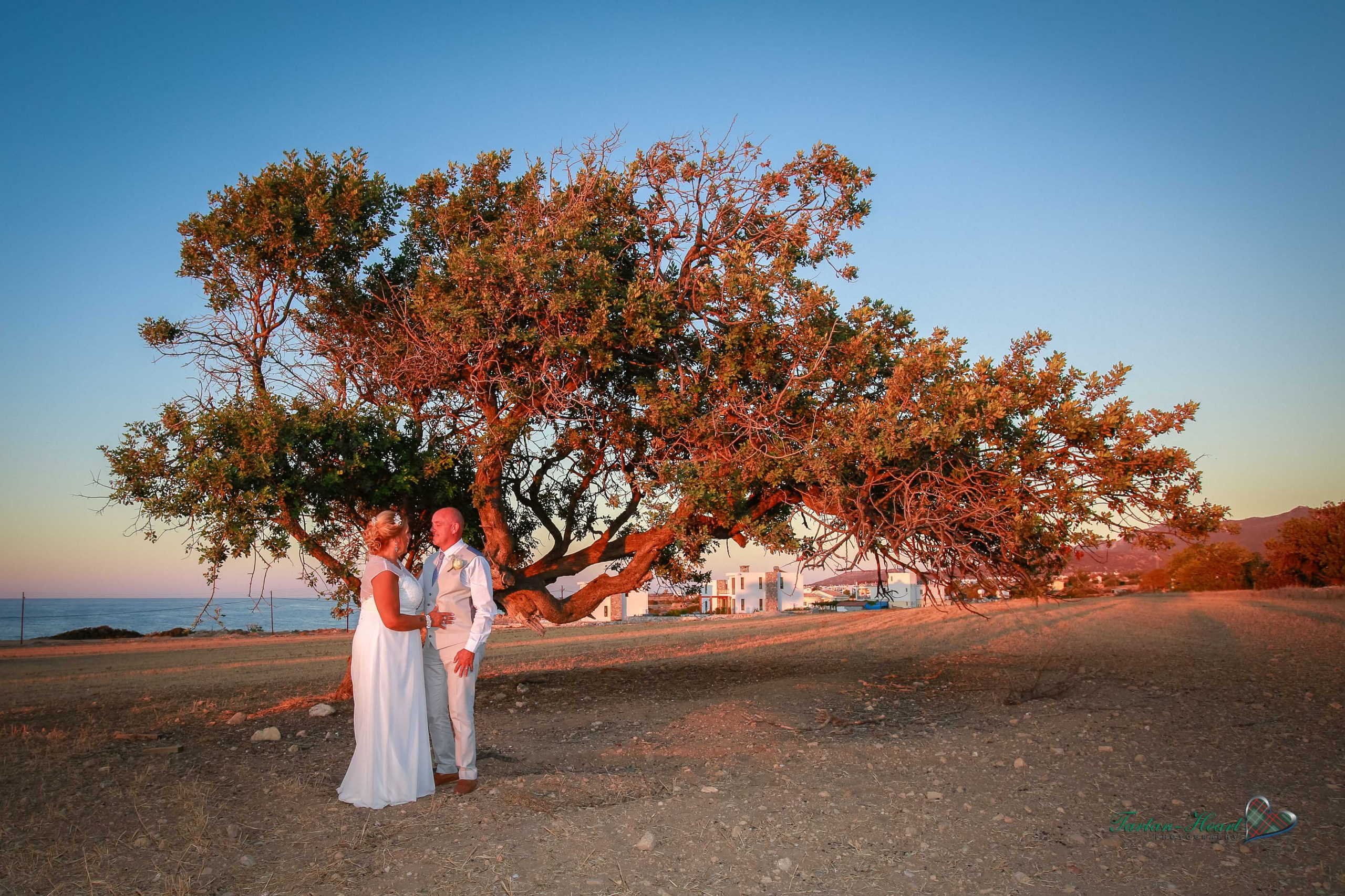 Gallery weddings in north cyprus